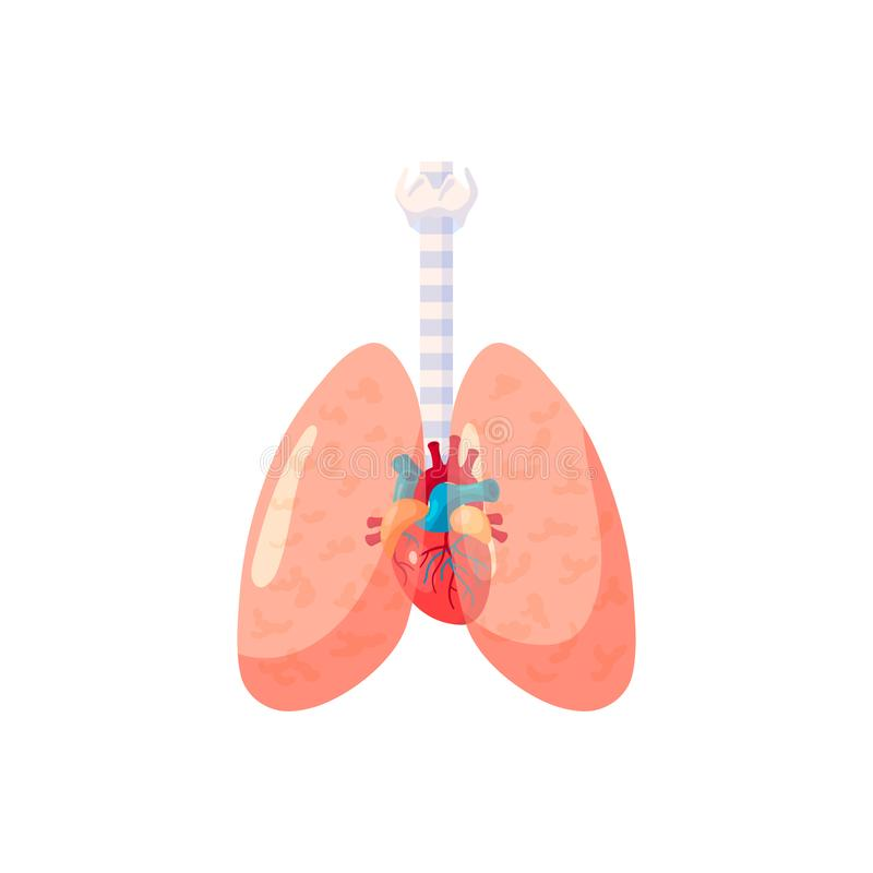 Icono humano de los pulmones en estilo plano ilustración del vector