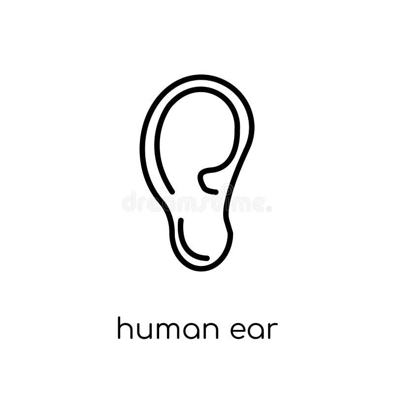 Icono humano del oído Icono humano del oído del vector linear plano moderno de moda ilustración del vector