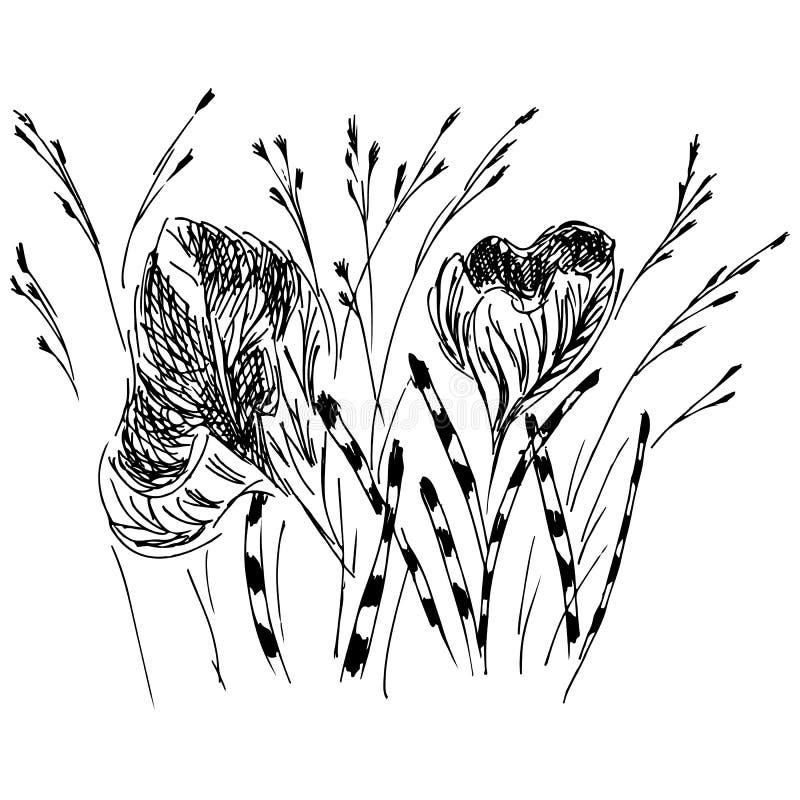 Icono linear con la mano negra del esquema de los wildflowers en el fondo blanco Bosquejo del vector El panel solar y muestra par libre illustration