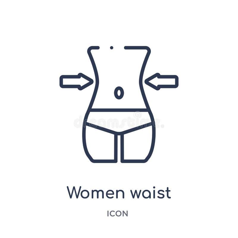 Icono linear de la cintura de las mujeres de la colección del esquema de la belleza Línea fina vector de la cintura de las mujere ilustración del vector
