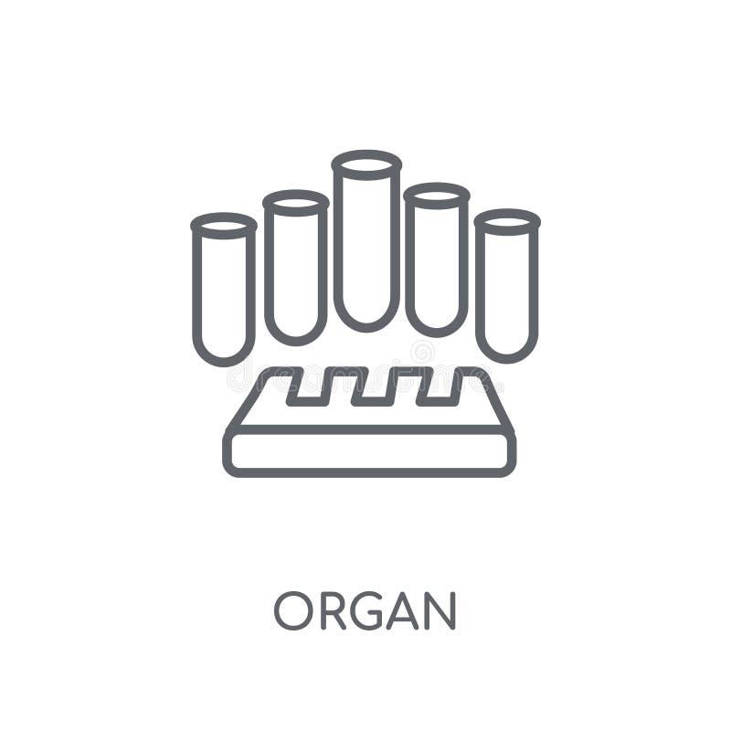 Icono linear del órgano Concepto moderno del logotipo del órgano del esquema en los vagos blancos stock de ilustración