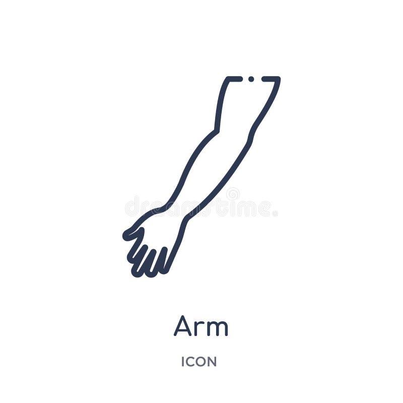 Icono linear del brazo de la colección médica del esquema Línea fina icono del brazo aislado en el fondo blanco ejemplo de moda d stock de ilustración