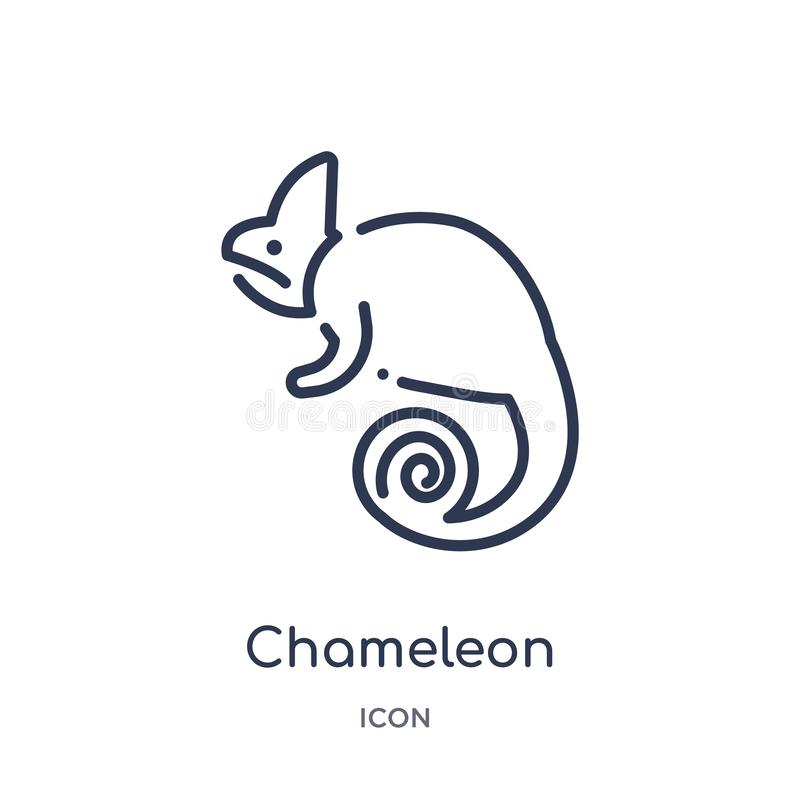 Icono linear del camaleón de la colección del esquema de los animales Línea fina icono del camaleón aislado en el fondo blanco ca ilustración del vector