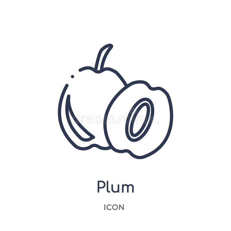 Icono linear del ciruelo de la colección del esquema de las frutas Línea fina icono del ciruelo aislado en el fondo blanco ejempl libre illustration