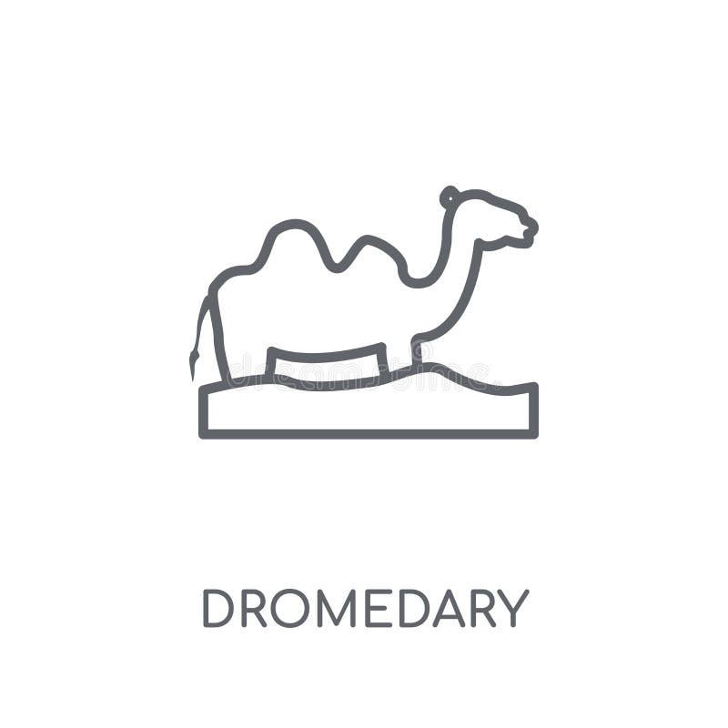 Icono linear del dromedario Concepto moderno del logotipo del dromedario del esquema encendido ilustración del vector