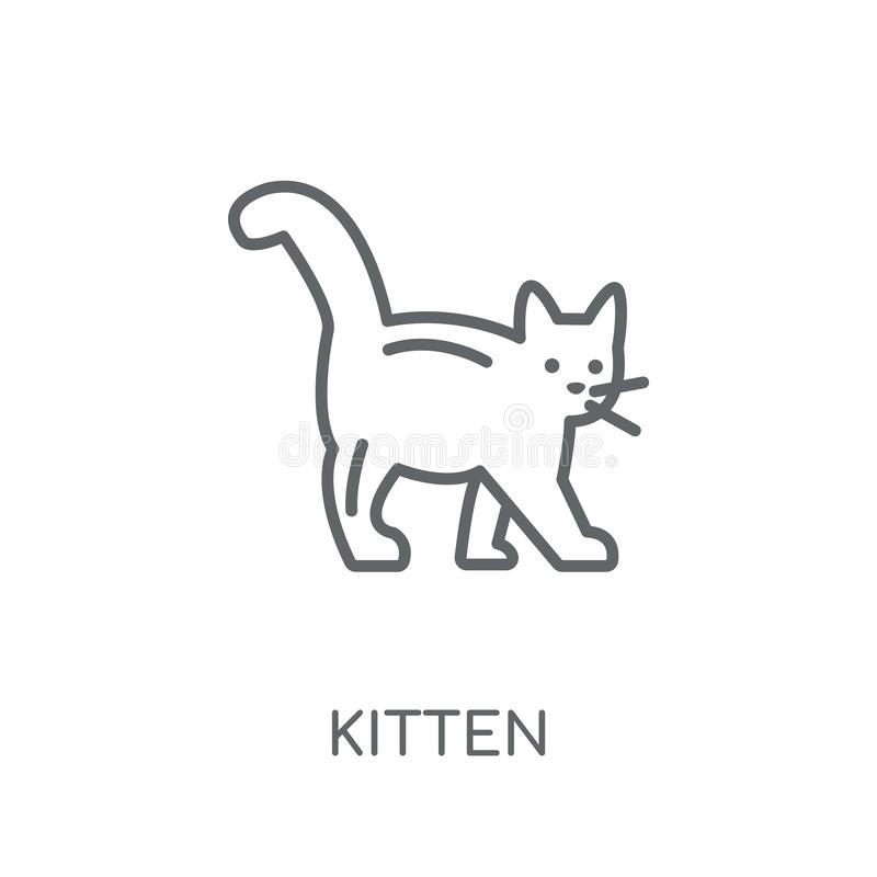 icono linear del gatito Concepto moderno del logotipo del gatito del esquema en blanco ilustración del vector