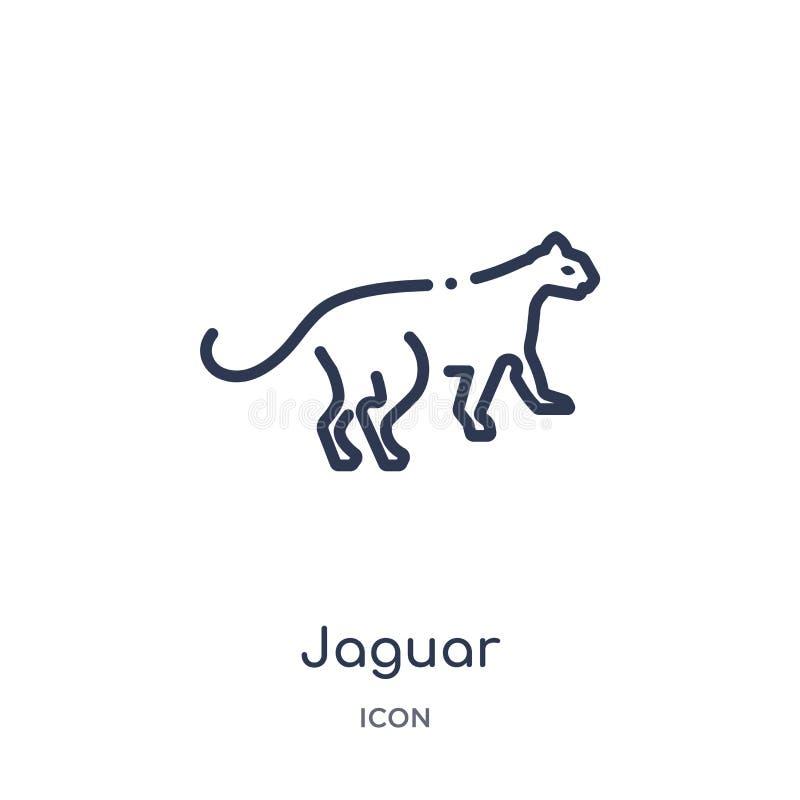 Icono linear del jaguar de animales y de la colección del esquema de la fauna Línea fina vector del jaguar aislado en el fondo bl libre illustration