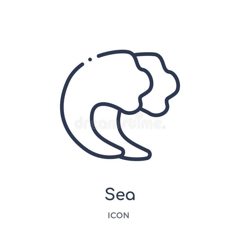 Icono linear del mar de la colección del esquema de Brazilia Línea fina vector del mar aislado en el fondo blanco ejemplo de moda ilustración del vector