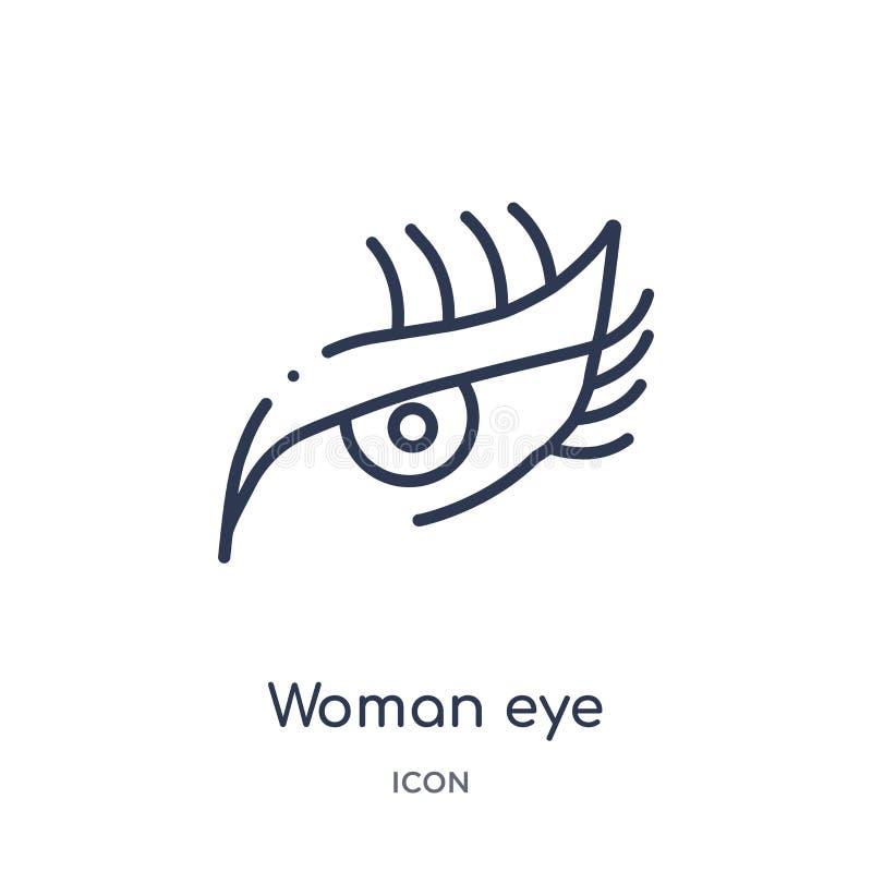 Icono linear del ojo de la mujer de la colección del esquema de la belleza Línea fina vector del ojo de la mujer aislado en el fo stock de ilustración