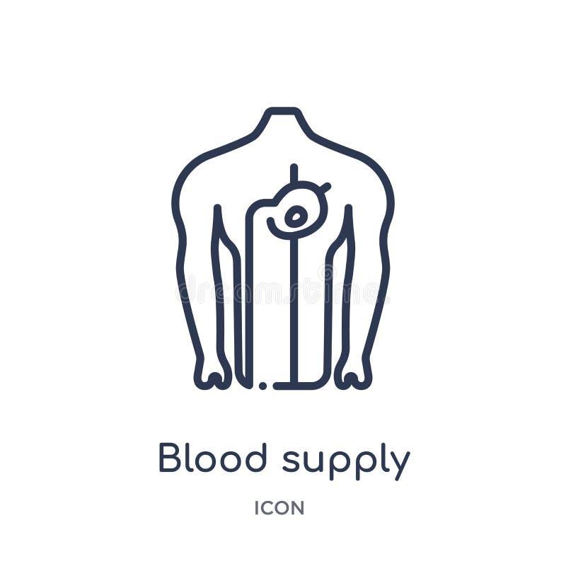 Icono linear del sistema de abastecimiento de la sangre de la colección humana del esquema de las partes del cuerpo Línea fina ic libre illustration