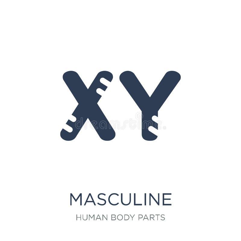 Icono masculino de los cromosomas Vector plano de moda Chromos masculino ilustración del vector