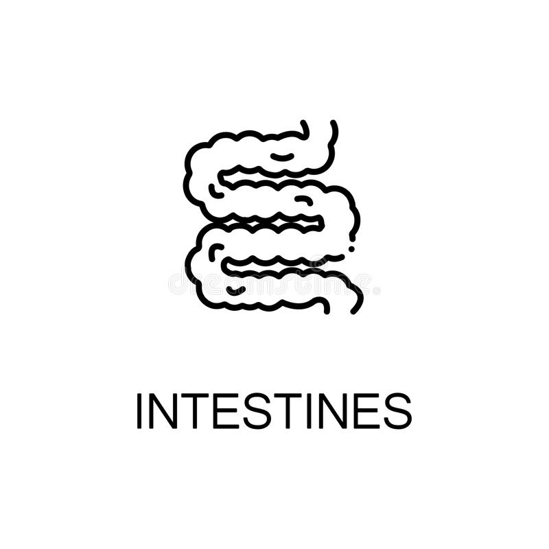 Icono plano de los intestinos stock de ilustración
