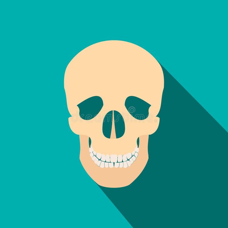 Icono plano del cráneo humano con la sombra stock de ilustración