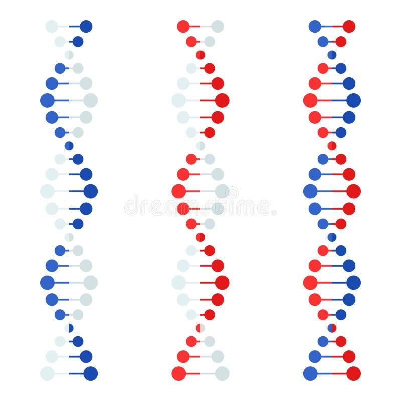 Icono plano del filamento de la DNA aislado en blanco libre illustration