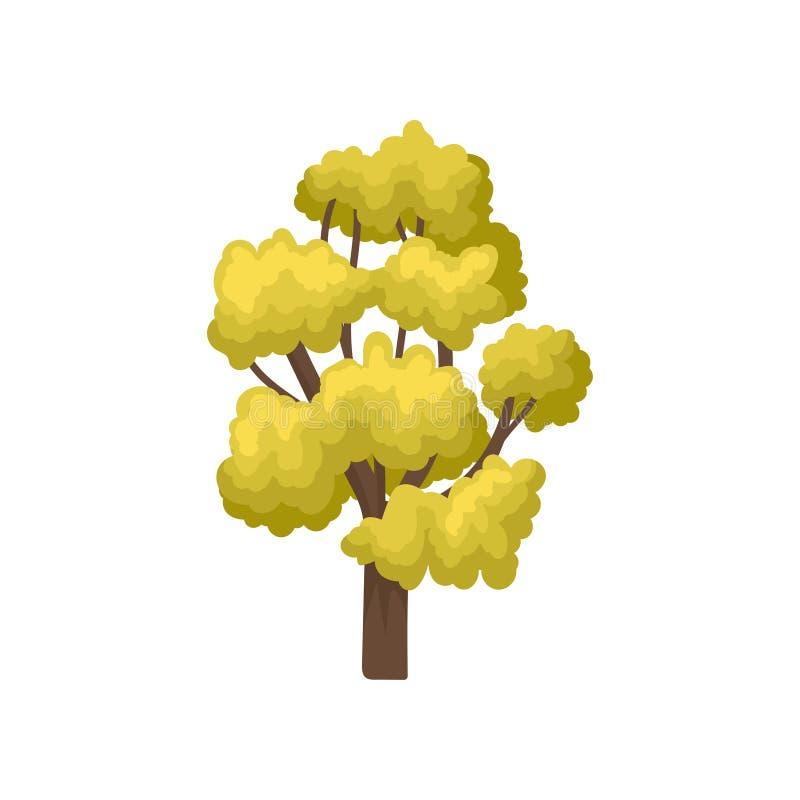 Icono plano del vector del árbol grande con muchas ramas y hojas verdes claras Elemento natural del bosque o del parque del otoño libre illustration
