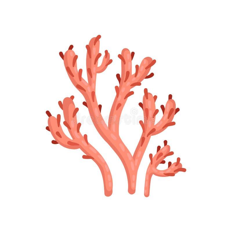 Icono plano del vector del coral suave rojo brillante Planta de aguas tropicales Marine Ecosystem Vida del mar y del océano ilustración del vector