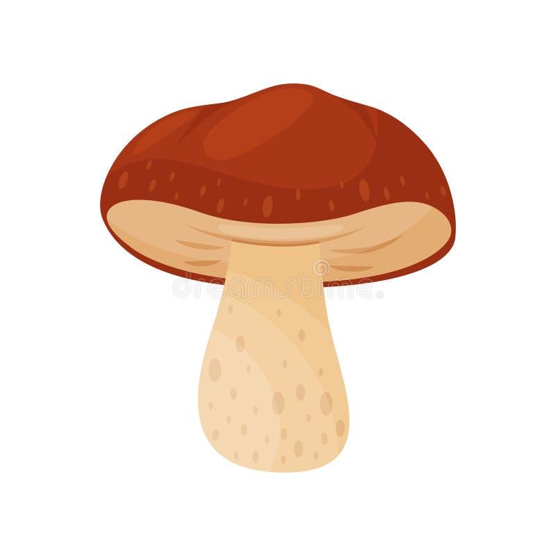 Icono plano del vector del mustelina del russula Seta con el casquillo marrón y el tallo beige Hongo comestible cocinar el ingred stock de ilustración