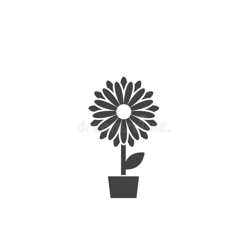 Icono plano negro de la flor del crisantemo en pote Floración grande con los pétalos agudos grandes y la base blanca libre illustration