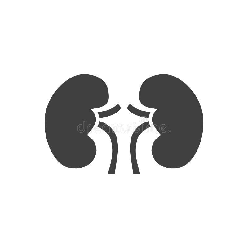 Icono relacionado del vector del riñón ilustración del vector