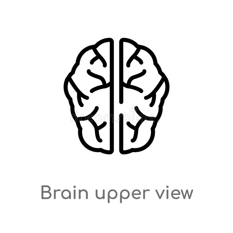 icono superior del vector de la opinión del cerebro del esquema l?nea simple negra aislada ejemplo del elemento del concepto huma ilustración del vector