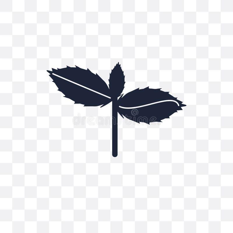 Icono transparente de la albahaca Diseño del símbolo de la albahaca de la fruta y del veget stock de ilustración
