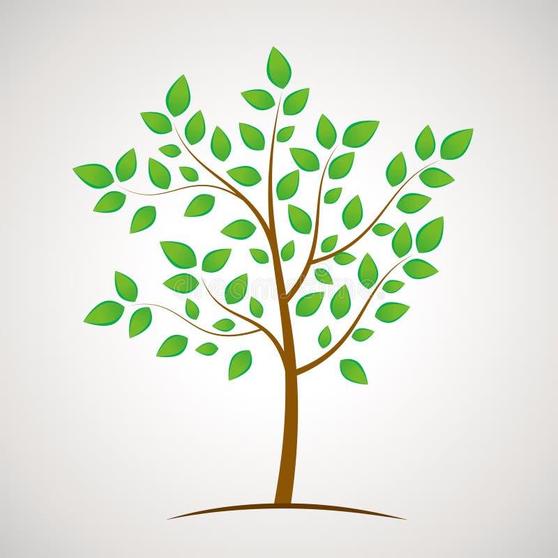 Icono verde del árbol del eco con las hojas de la abundancia,  fotografía de archivo
