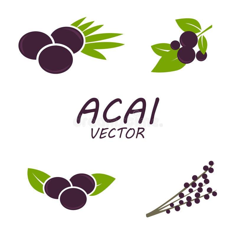 Iconos de Acai del vector fijados stock de ilustración