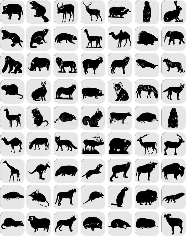 Iconos de animales ilustración del vector