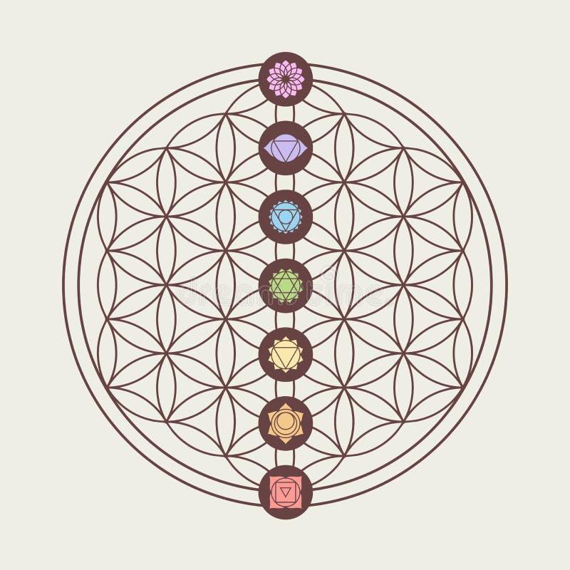 Iconos de Chakra en diseño sagrado de la geometría stock de ilustración