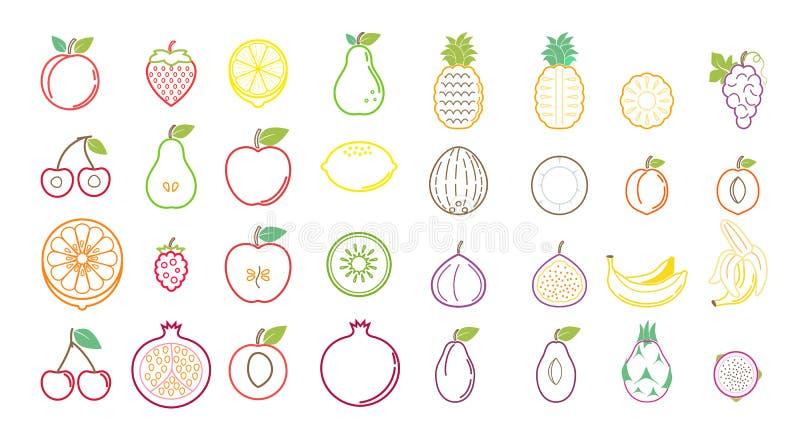 Iconos de la fruta tropical del verano para los anuncios y las banderas del fondo fotografía de archivo libre de regalías