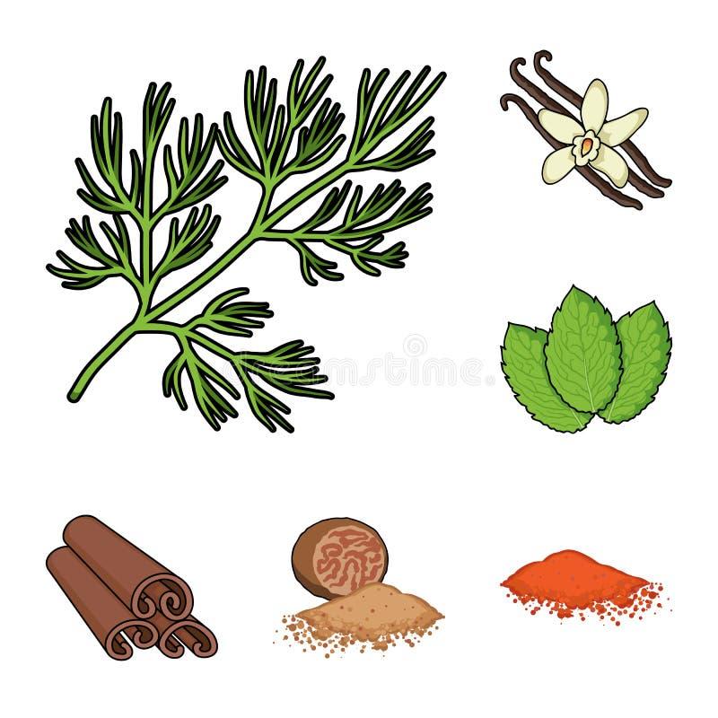 Iconos de la hierba y de la historieta de las especias en la colección del sistema para el diseño Diferentes tipos de web de la a stock de ilustración
