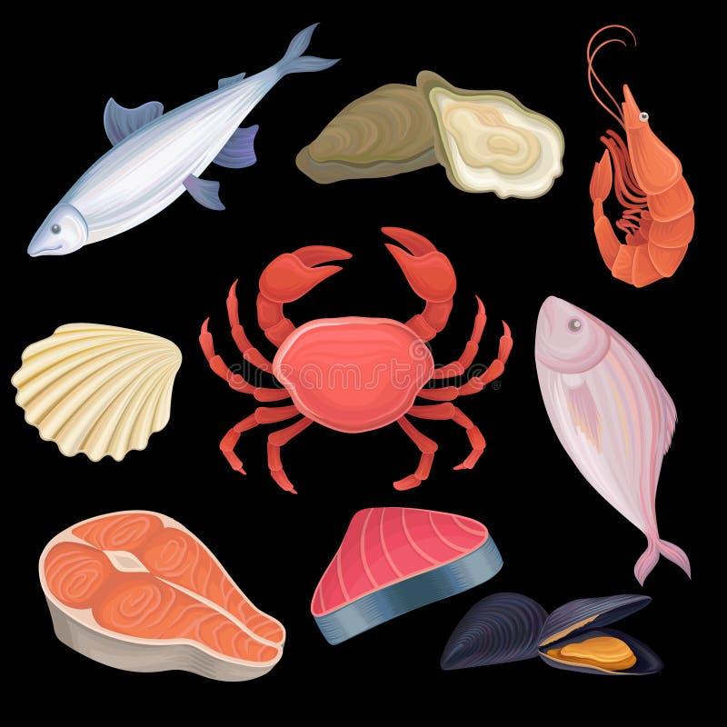 Iconos de la historieta fijados con el diferente tipo de mariscos Atún, ostras, camarón, pescado de agua dulce, cangrejo, concha  ilustración del vector