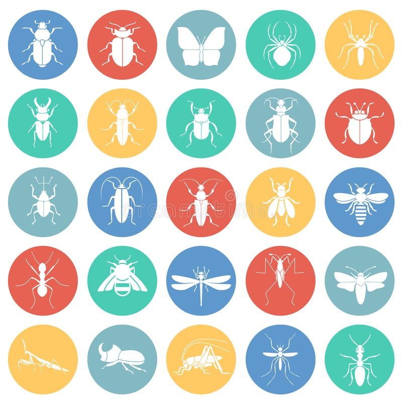 Iconos de los insectos fijados en el fondo blanco de los círculos de color para el gráfico y el diseño web, muestra simple modern libre illustration