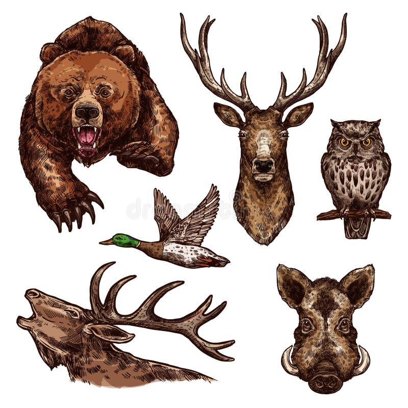 Iconos del bosquejo del vector de los pájaros de los animales salvajes stock de ilustración