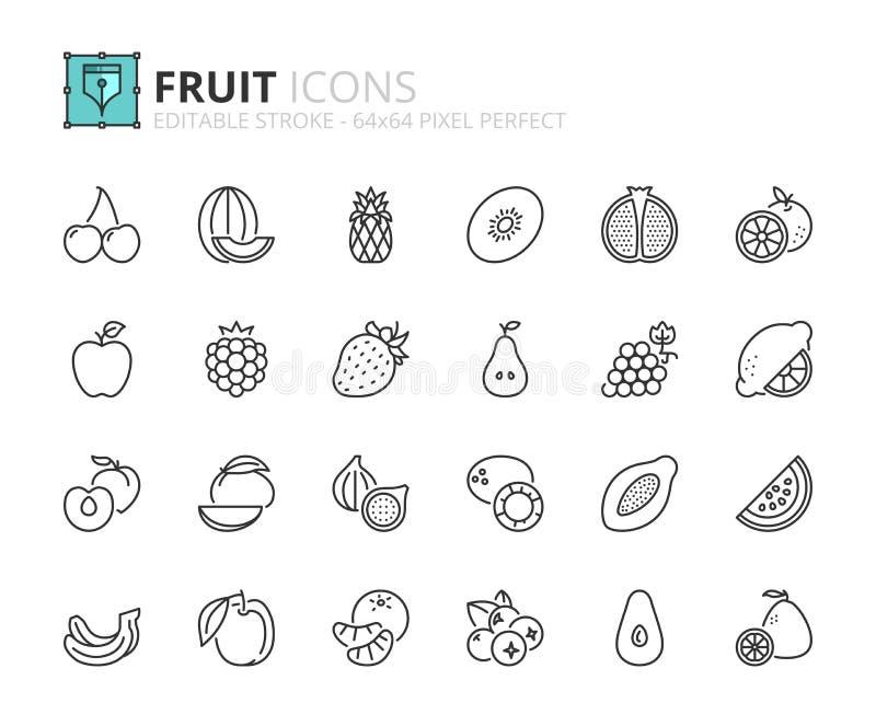 Iconos del esquema sobre la fruta stock de ilustración