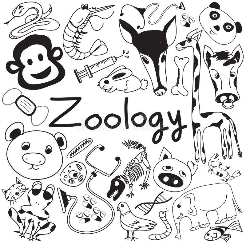 Iconos del garabato de la biología de la zoología de diversas especies animales ilustración del vector