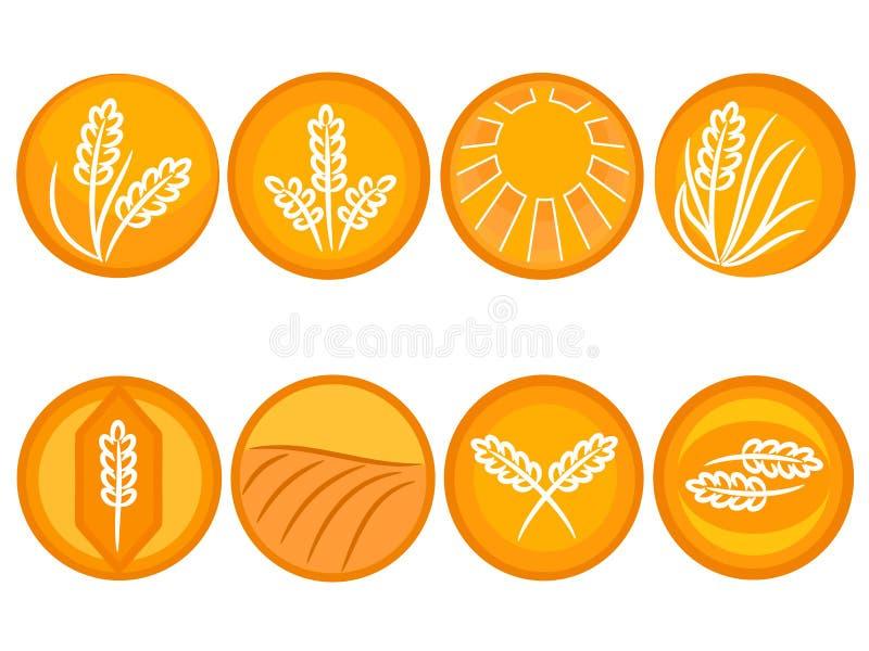 Iconos del trigo ilustración del vector