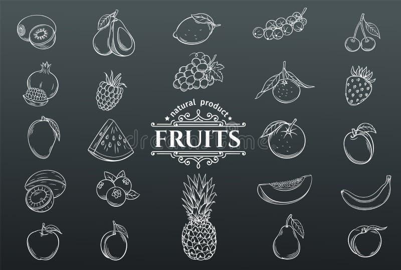 Iconos dibujados mano de las frutas del vector fijados ilustración del vector