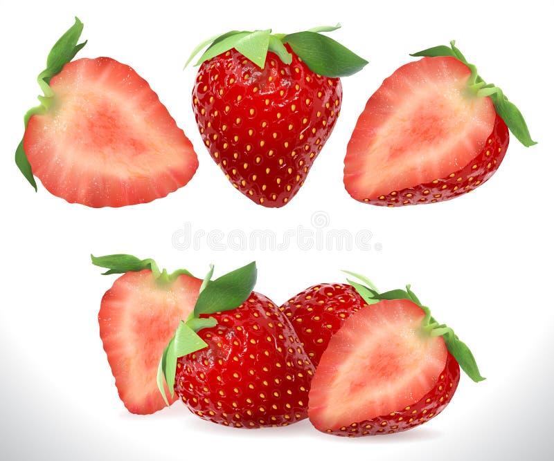 Iconos dulces realistas del vector de la fruta de la baya 3D de la fresa fijados Ejemplo común realista ilustración del vector