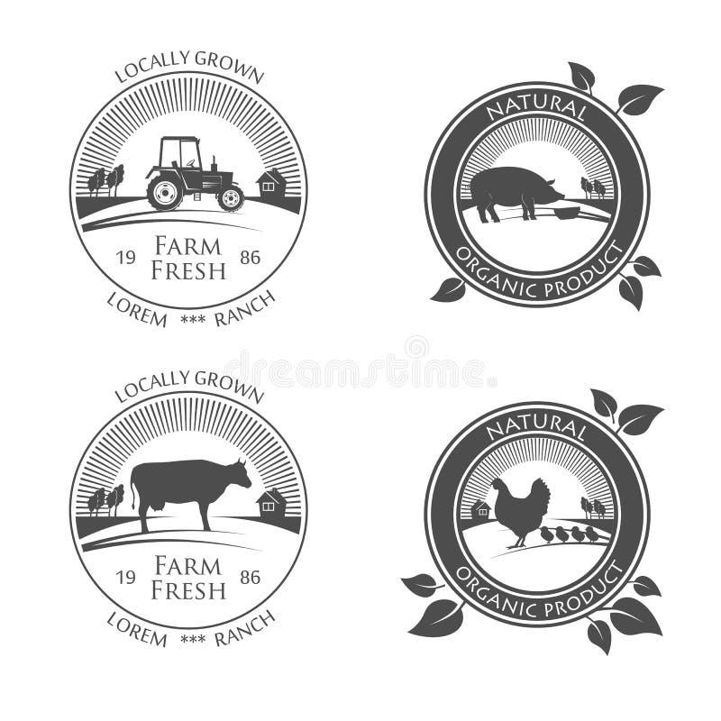 Iconos frescos de la producción de granja vector el logotipo con la imagen del pollo de la granja, del cerdo y de la vaca, carne  stock de ilustración