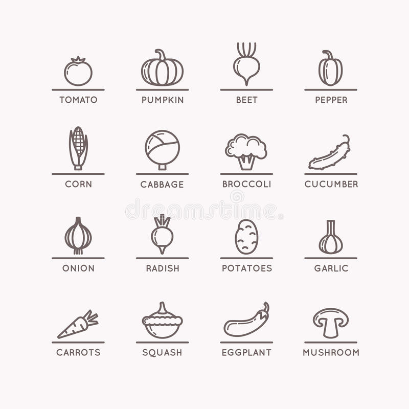 Iconos lineares de verduras libre illustration
