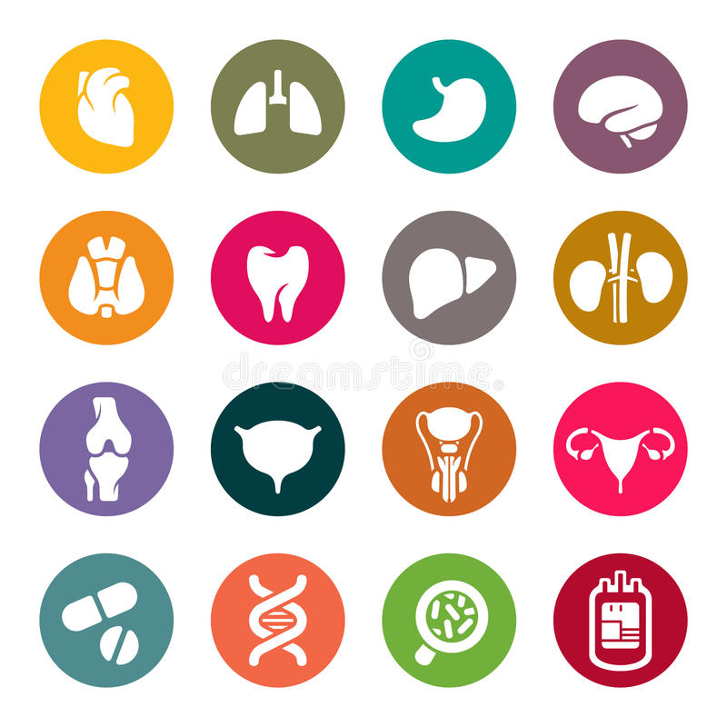 Iconos médicos. Órganos humanos libre illustration