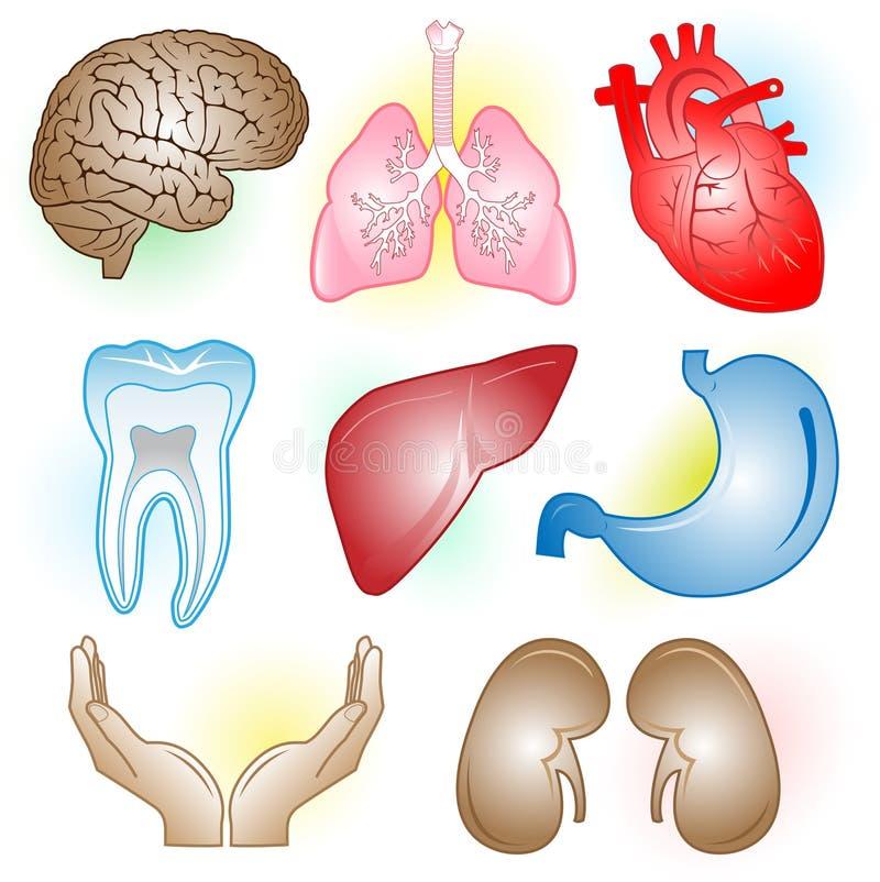 Iconos médicos del vector stock de ilustración