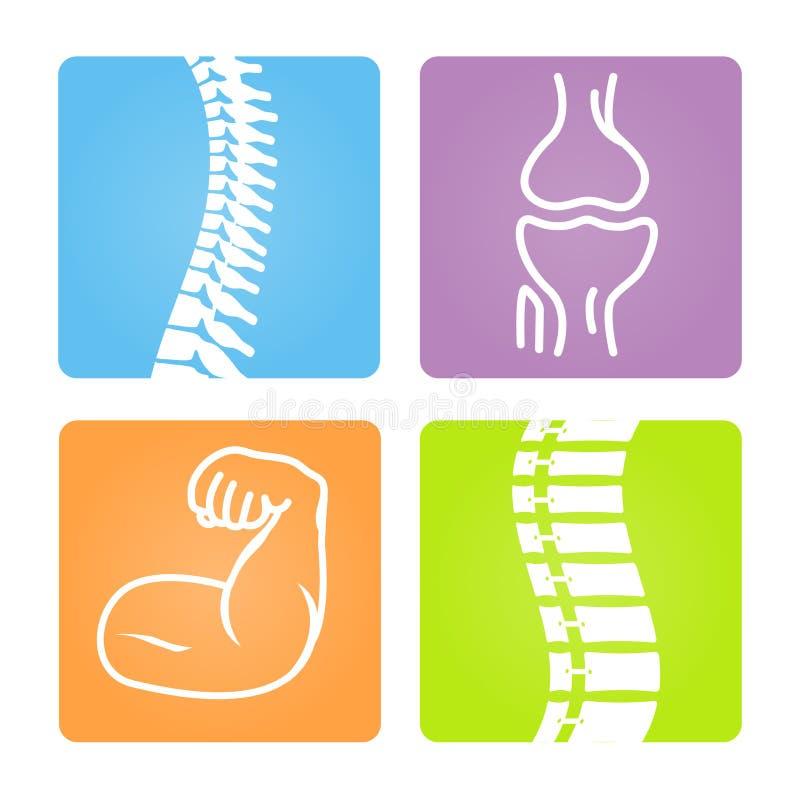 Iconos musculoesqueléticos de la imagen stock de ilustración