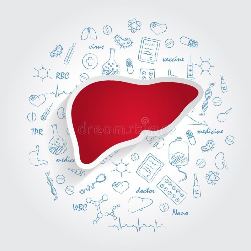 Iconos para las especialidades médicas Hepatology y concepto del hígado Ejemplo del vector con garabato dibujado mano de la medic ilustración del vector