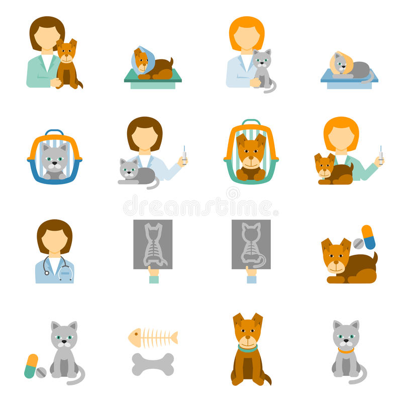 Iconos planos de la práctica veterinaria de la clínica fijados ilustración del vector
