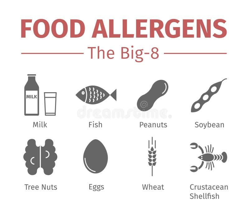 Iconos planos de los alergénicos de la comida Un grupo de las ocho comidas alergénicas principales se refiere a menudo como el Bi libre illustration