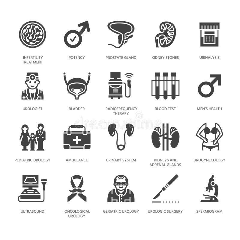 Iconos planos del glyph del vector de la urología Urólogo, vejiga, riñones, glándulas suprarrenales, próstata Pictogramas médicos ilustración del vector