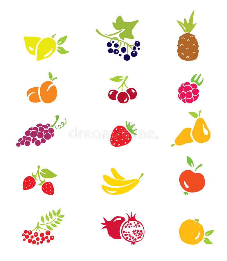 Icons - fruits and berries vector illustration