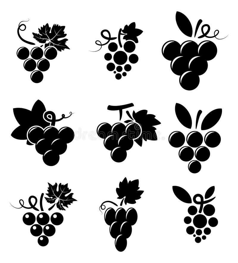 Icons of grapes, vector royalty free illustration